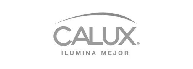CALUX-min